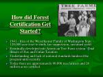 how did forest certification get started