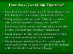 how does greenlink function