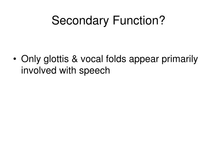 Secondary Function?