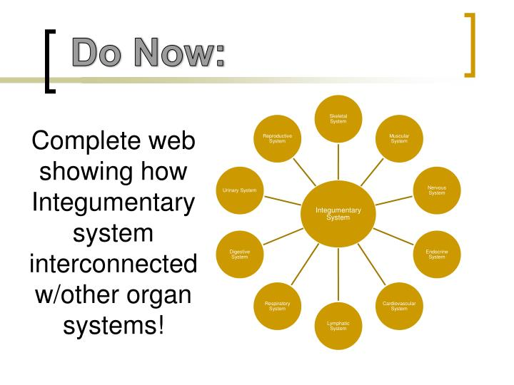 Complete web showing how