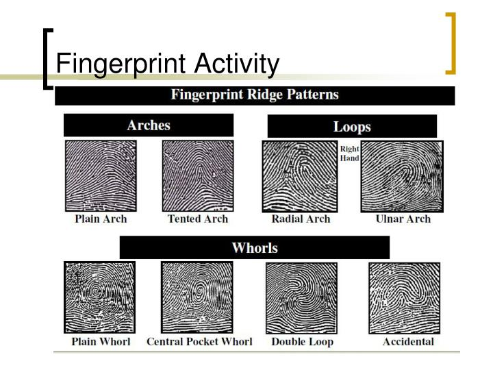Fingerprint Activity