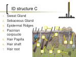 id structure c
