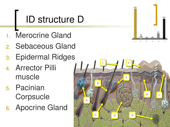ID structure D