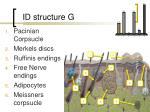 id structure g