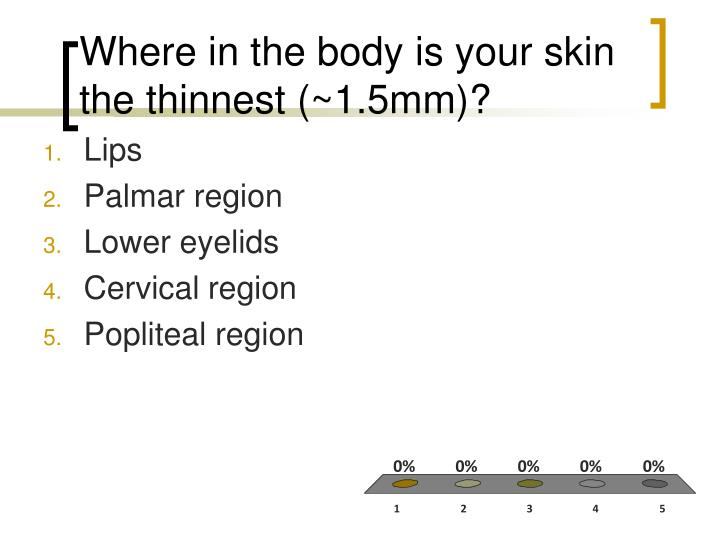 Where in the body is your skin the thinnest 1 5mm