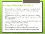 planned milestones for year 1