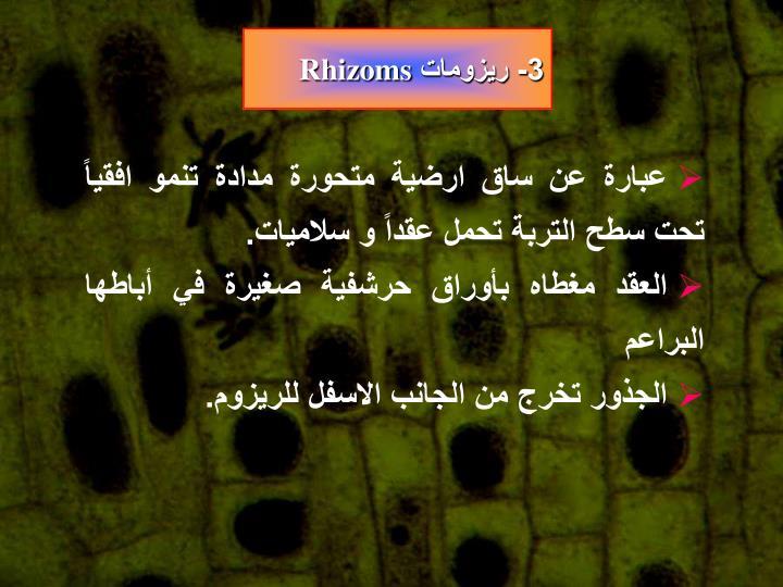 3- ريزومات