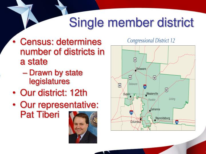 Single member district