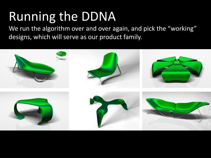 Running the DDNA