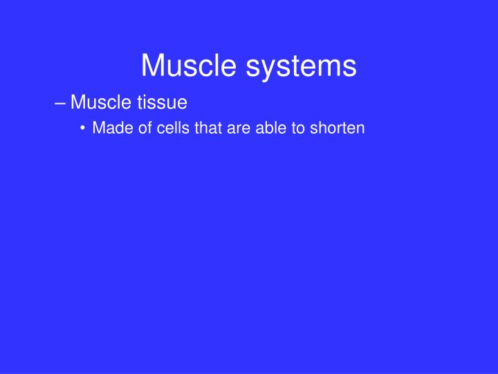 Muscle systems