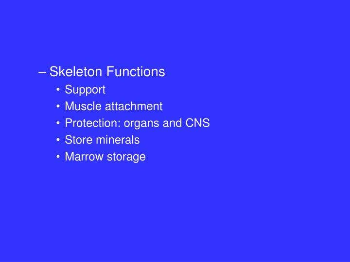 Skeleton Functions