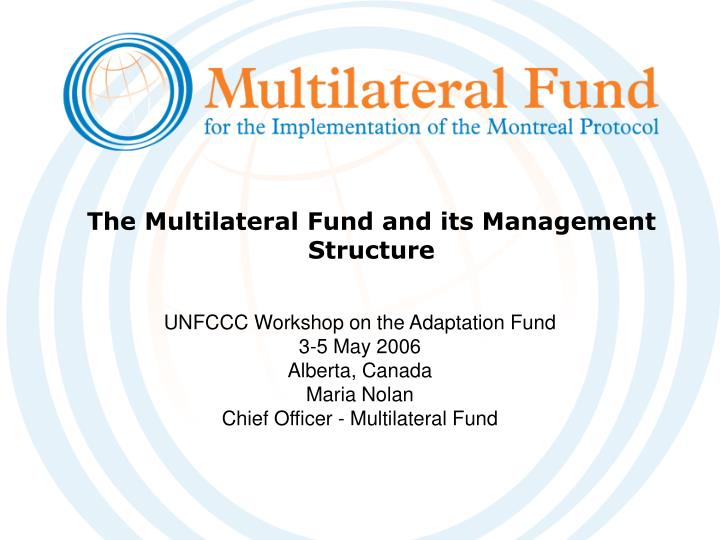 The multilateral fund and its management structure