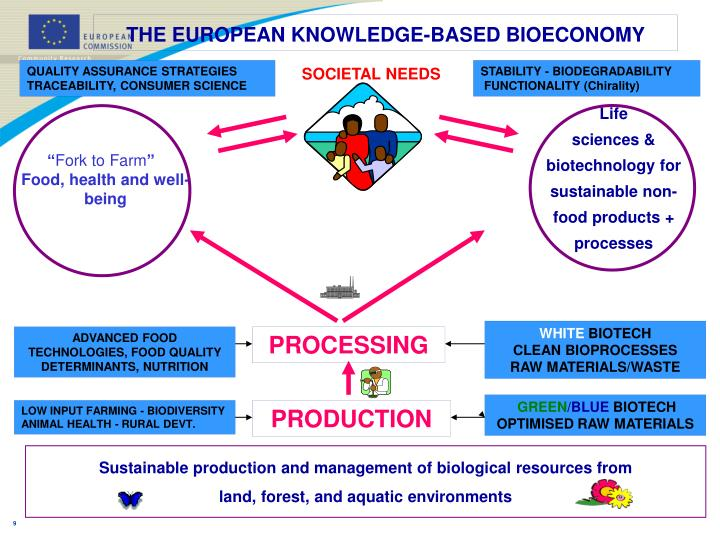 THE EUROPEAN KNOWLEDGE-BASED BIOECONOMY