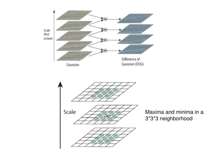 Maxima and minima in a