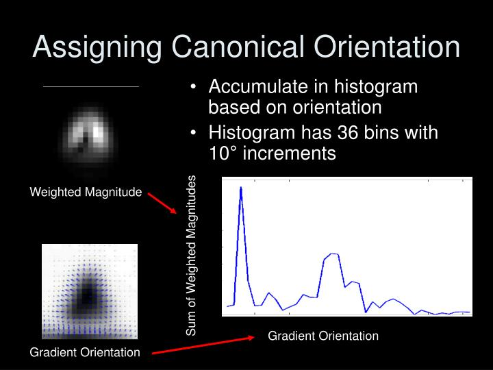 Assigning Canonical Orientation