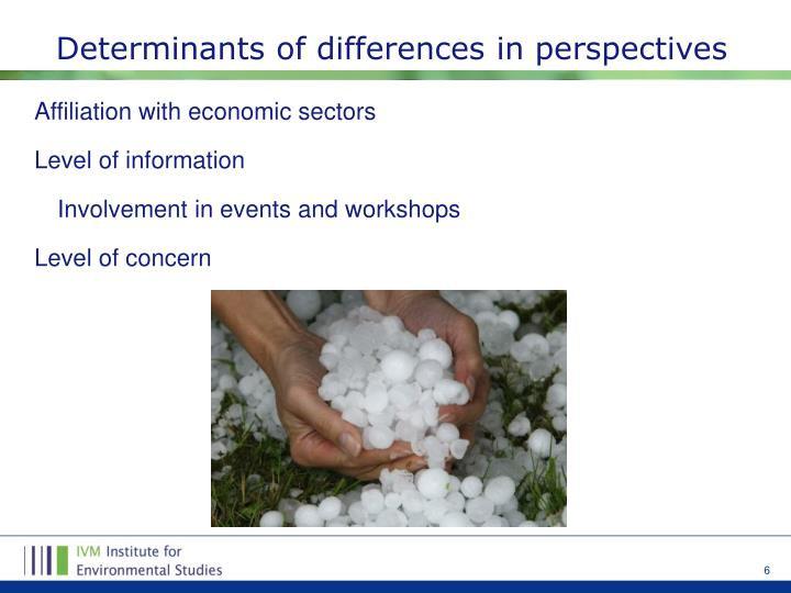Determinants of differences in perspectives