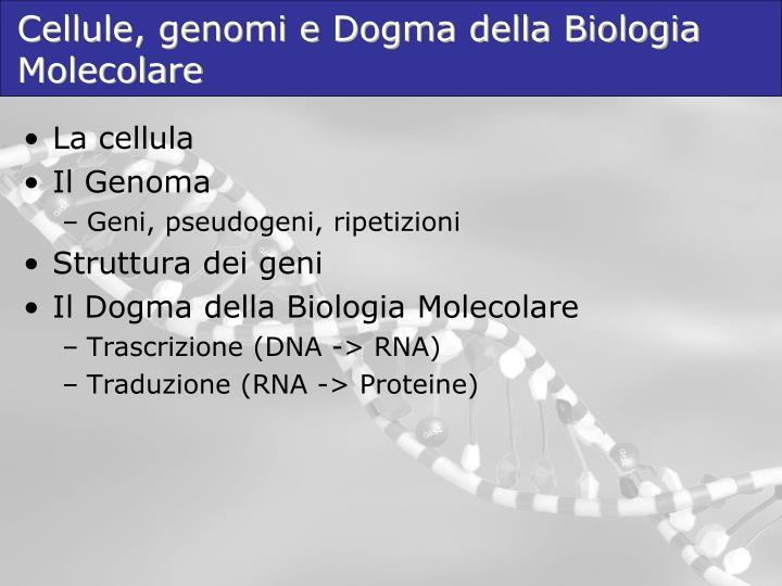 Cellule, genomi e Dogma della Biologia Molecolare