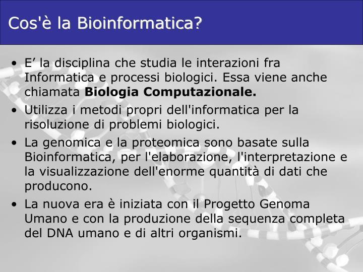 Cos'è la Bioinformatica?