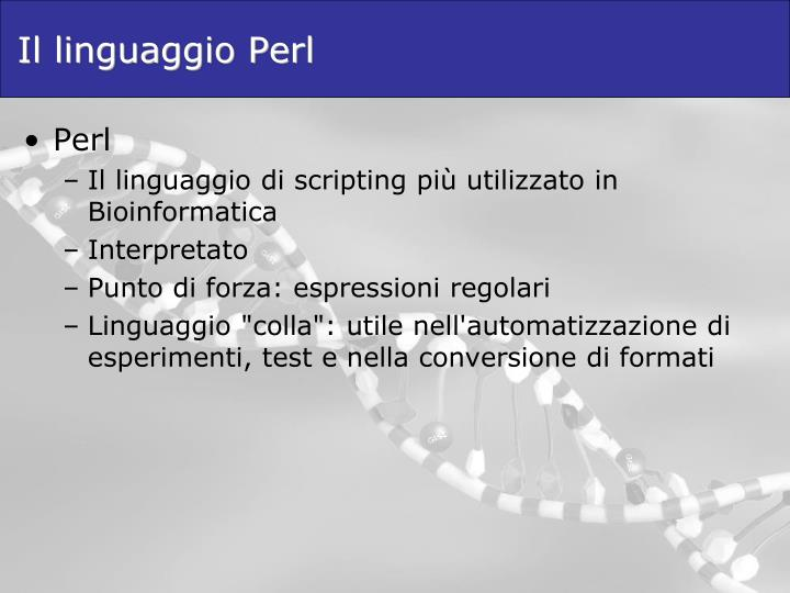 Il linguaggio Perl