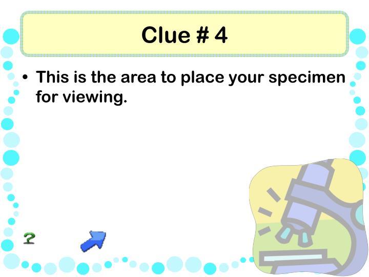 Clue # 4