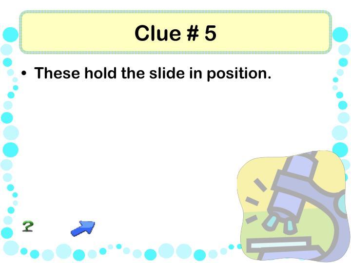 Clue # 5