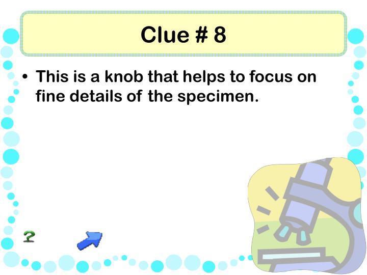 Clue # 8