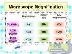 microscope magnification