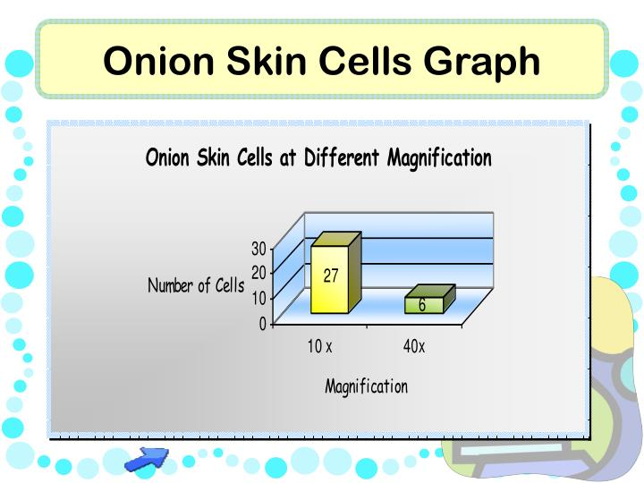 Onion Skin Cells Graph