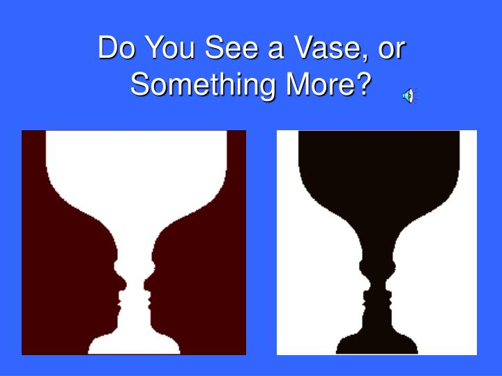 Do You See a Vase, or Something More?