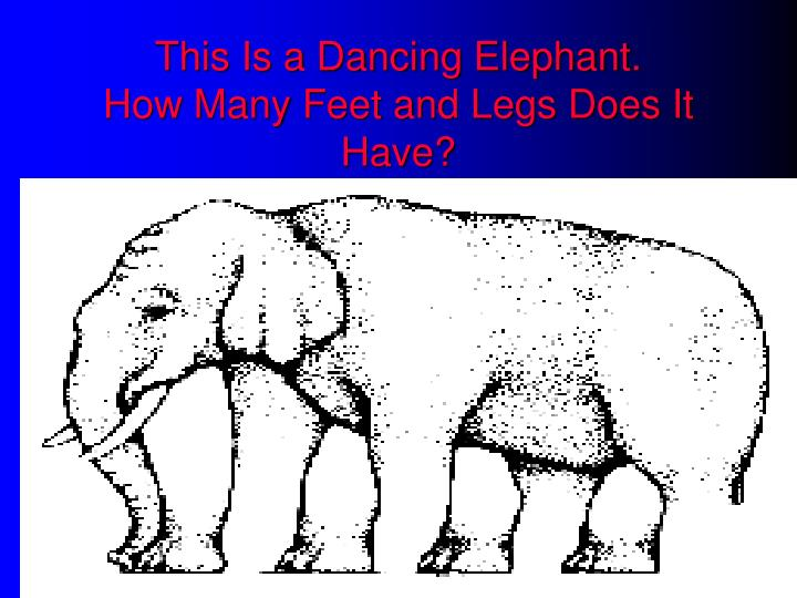 This Is a Dancing Elephant.