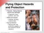 flying object hazards and protection