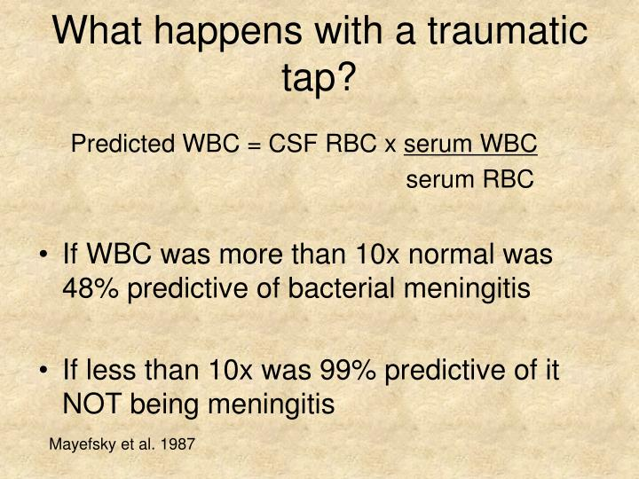What happens with a traumatic tap?