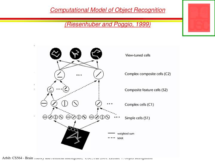 Computational Model of Object Recognition