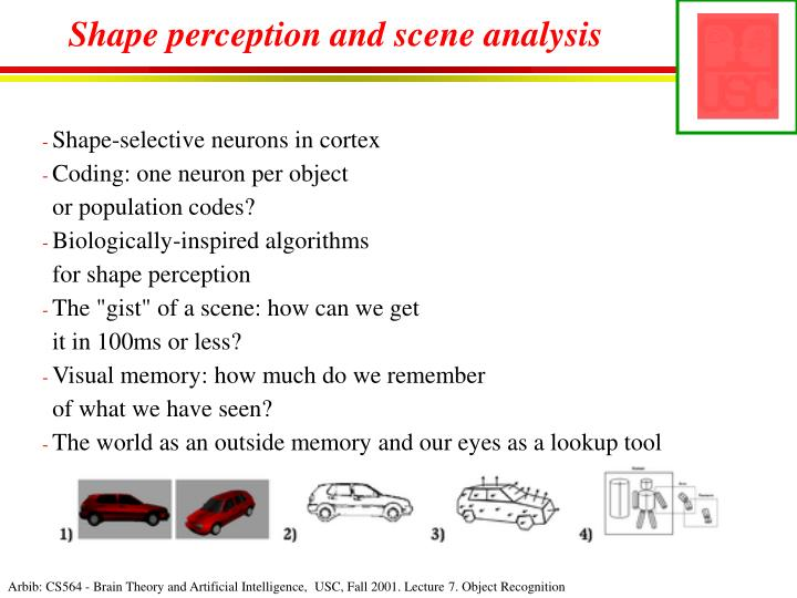 Shape perception and scene analysis