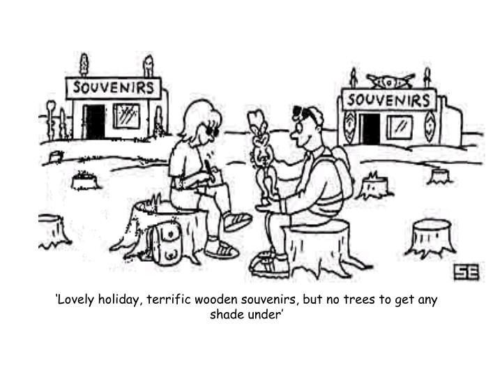 'Lovely holiday, terrific wooden souvenirs, but no trees to get any shade under'