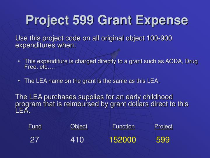 Project 599 Grant Expense