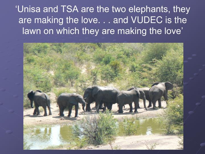 'Unisa and TSA are the two elephants, they are making the love. . . and VUDEC is the lawn on which...