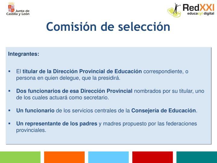 Comisión de selección