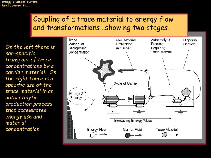 Coupling of a trace material to energy flow and transformations...showing two stages.