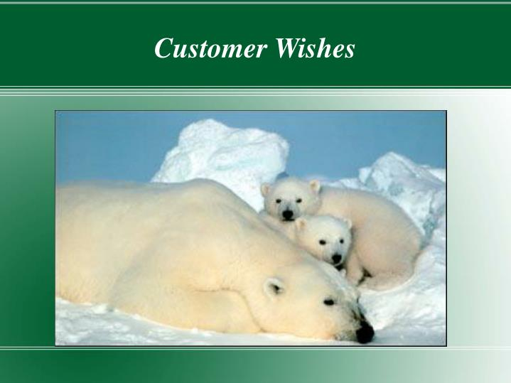Customer Wishes