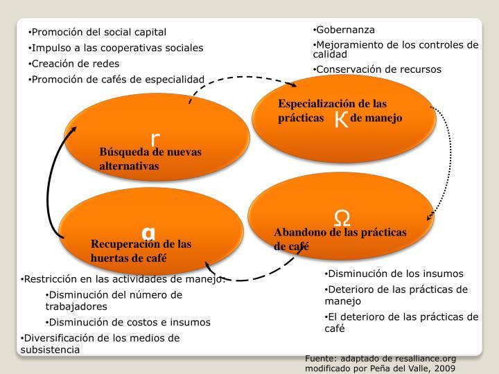 Promoción del social capital