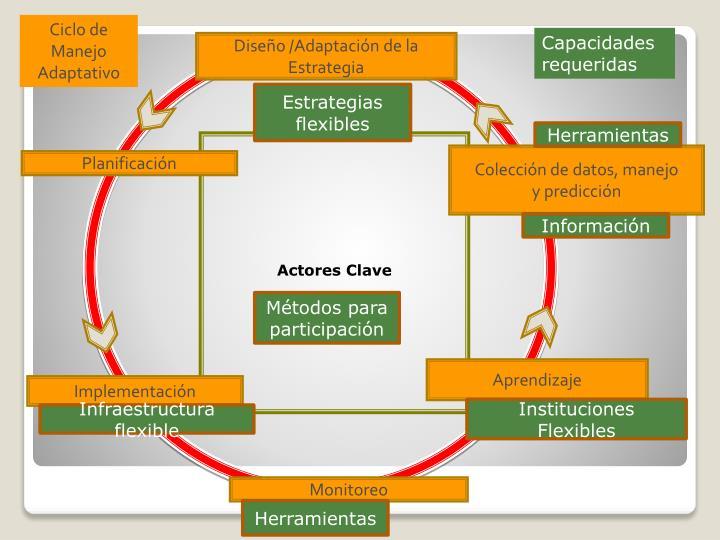 Ciclo de Manejo Adaptativo