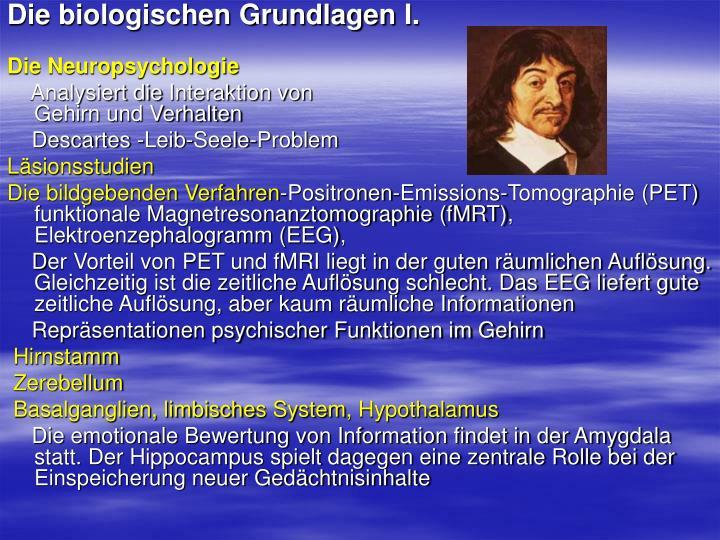Die biologischen Grundlagen