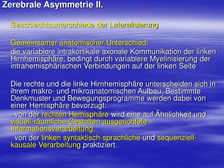 Zerebrale Asymmetrie