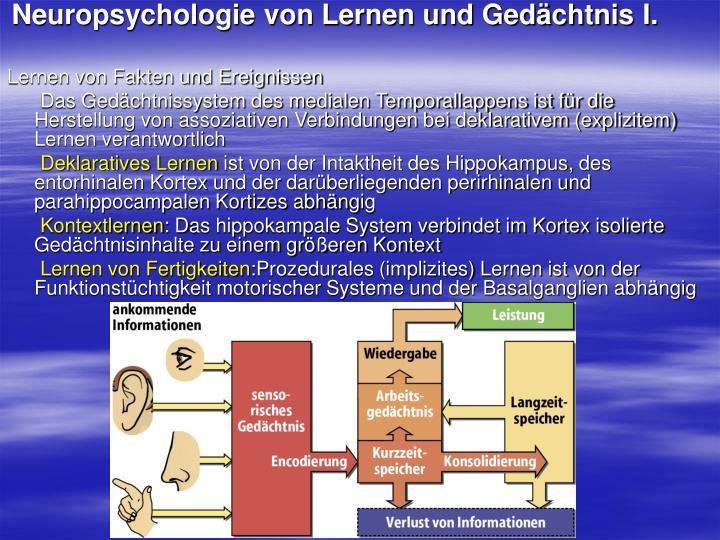 Neuropsychologie von Lernen und Gedächtnis