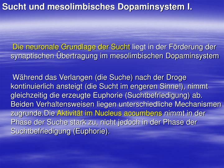 Sucht und mesolimbisches Dopaminsystem