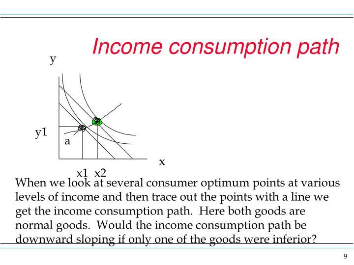 Income consumption path