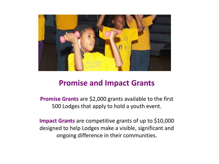 Promise and Impact Grants