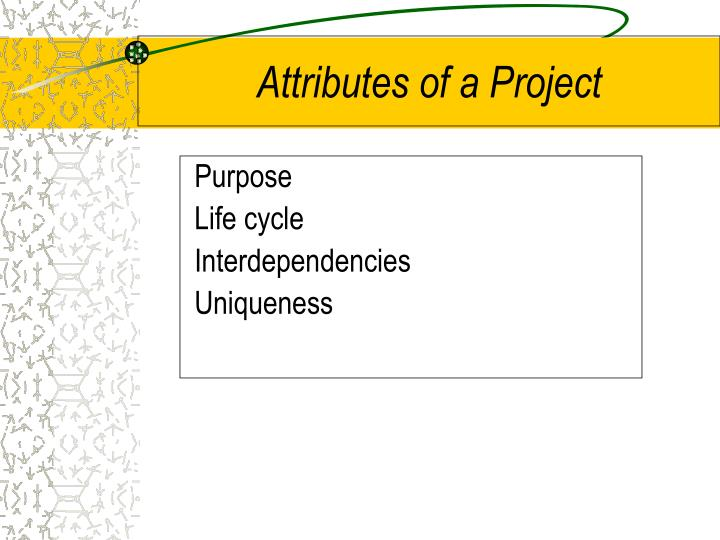 Attributes of a Project