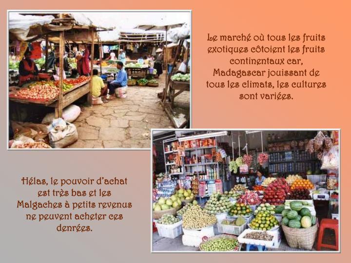 Le marché où tous les fruits exotiques côtoient les fruits continentaux car, Madagascar jouissant de tous les climats, les cultures sont variées.